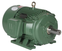 Premium Efficiency Electric Motor